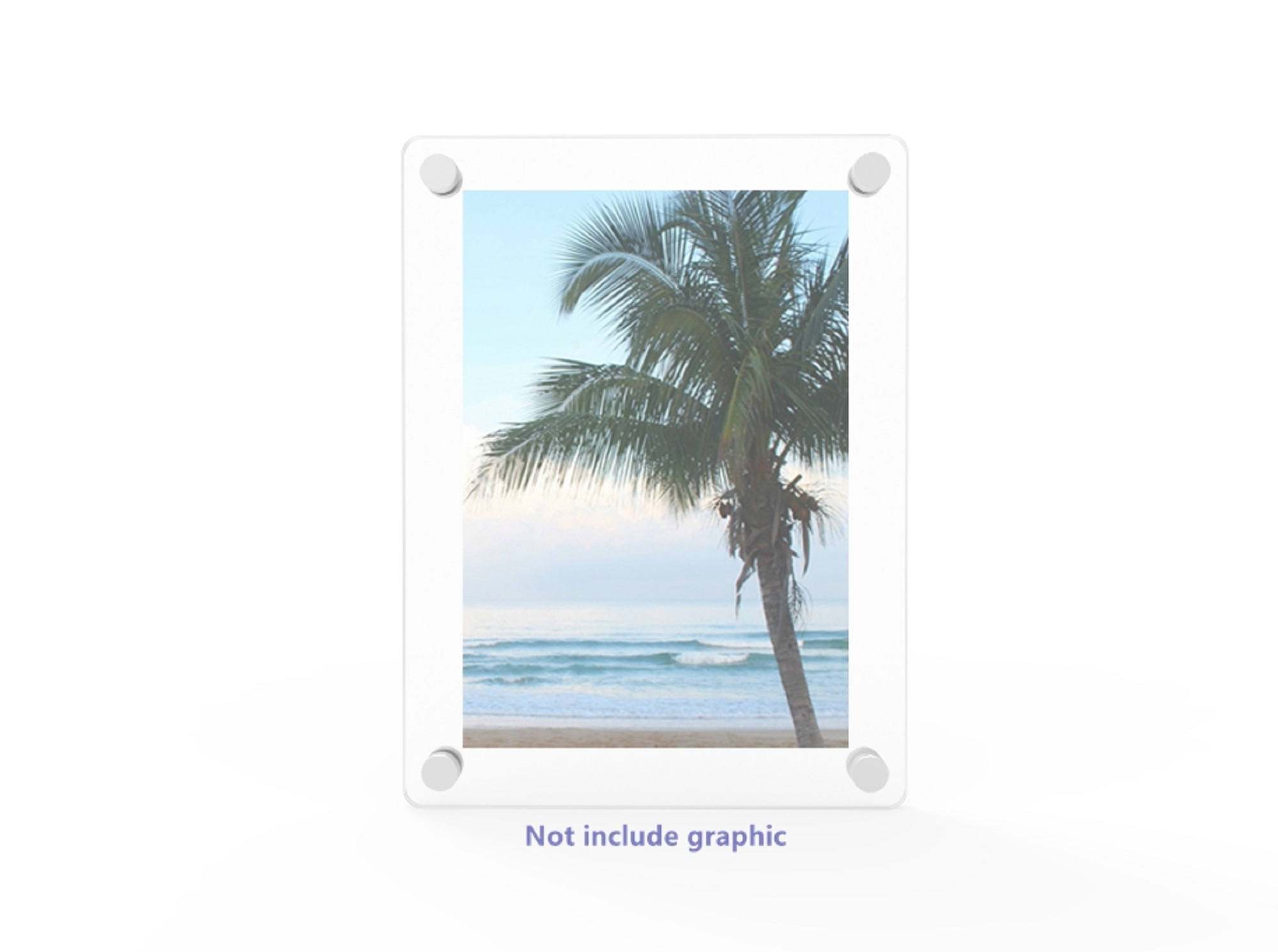 WALL MOUNT PICTURE Frame Acrylic Sign Holder Lucite Poster Display ...